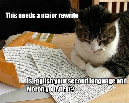 Funniest_Memes_this-needs-a-major-rewrite-is-english-your_9562